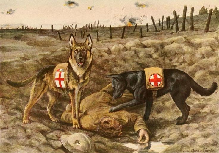 Pastores Alemães de Resgate
