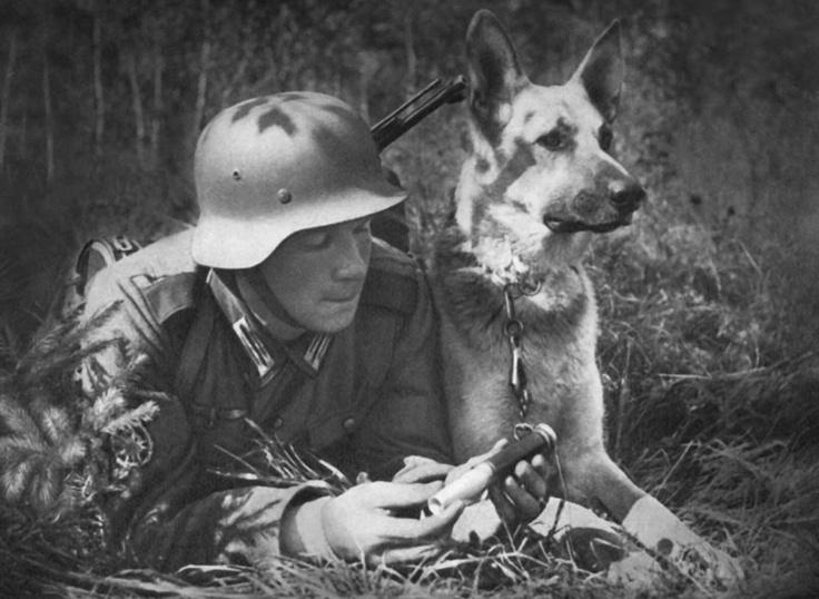 """Soldado Alemão e Seu """"Lobo da Alsácia"""""""