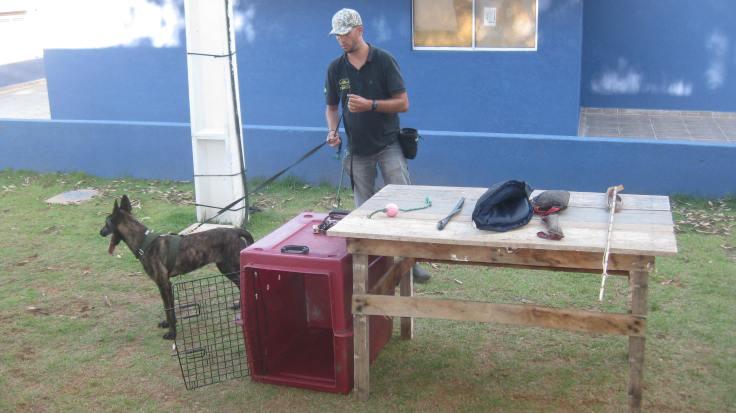 Seminário de Cães Multifuncionais - GCM Atibaia