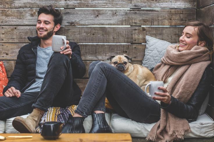 Invista na qualidade de vida de sua família e seu cão